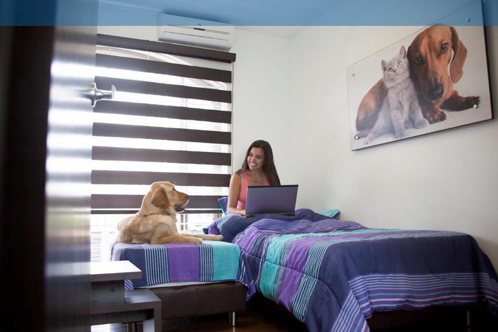 banner-hospitalizacion-premium-evi