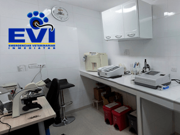 laboratorio-veterinaria-medellin-evi-galeria