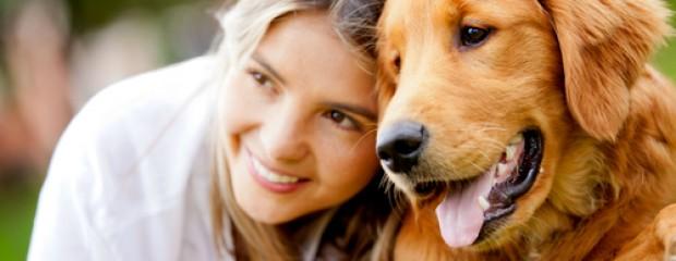 La importancia de esterilizar a tu mascota